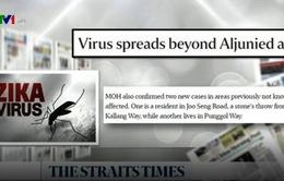 Nguyên nhân nào khiến virus Zika bùng phát nhanh chóng tại Singapore?