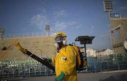 Brazil tăng cường diệt muỗi phòng virus Zika