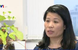 WHO đưa ra khuyến cáo về bệnh Zika tại Việt Nam
