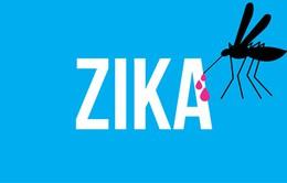 Mỹ cảnh báo virus Zika lan rộng vùng ven biển