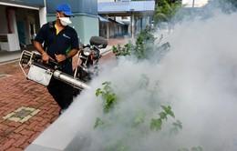 2,6 tỉ người đứng trước nguy cơ nhiễm virus Zika