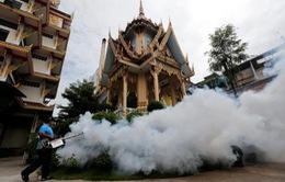Thái Lan đẩy mạnh các biện pháp phòng chống Zika
