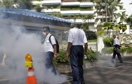 Số ca nhiễm Zika tăng nhanh, nhiều nước ra cảnh báo du lịch Singapore