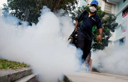 Số ca nhiễm virus Zika tại Philippines tiếp tục tăng
