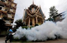 Thêm 33 ca nhiễm Zika tại Thái Lan