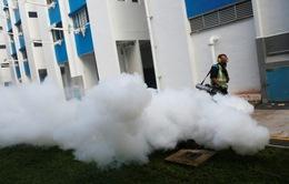 Số ca nhiễm Zika tăng cao, Singapore kêu gọi hợp tác khu vực