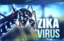 Khoanh vùng điều tra, giám sát virus Zika tại Việt Nam