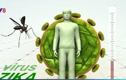 Dịch bệnh do virus Zika tại phía Nam chưa có dấu hiệu giảm nhiệt