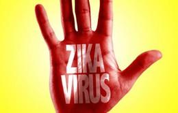 Bộ Y tế ban hành hướng dẫn chẩn đoán và điều trị virus Zika