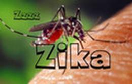 Mỹ, Brazil phối hợp để bào chế vaccine chống virus Zika