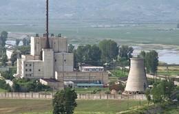 Quan chức Mỹ cáo buộc Triều Tiên tái khởi động sản xuất plutonium