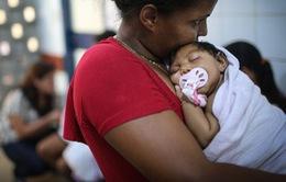 Nữ bệnh nhân nhiễm virus Zika tại Nhật Bản là người Đức