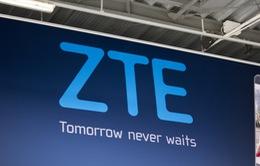 ZTE ra mắt smartphone bảo mật vân tay giá 2,3 triệu đồng