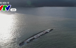 Chậm tiến độ trục vớt tàu chìm tại cảng Quy Nhơn, Bình Định