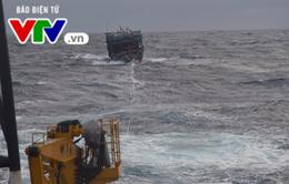 Vùng 3 Hải quân cứu hộ tàu cá Quảng Nam gặp nạn trên biển