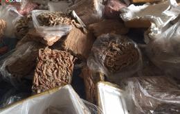 Hà Tĩnh: Tiêu hủy 23 tấn nội tạng động vật không rõ nguồn gốc