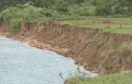Sạt lở đất nghiêm trọng ven sông Sê Păng Hiêng (Quảng Trị)