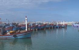 [Tiêu điểm] Nâng cao nhận thức ngư dân về vùng khai thác hải sản