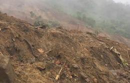 Video: Lời kể nhân chứng về vụ lở đất kinh hoàng ở Nam Trà My