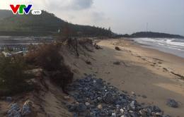 Sạt lở bờ biển nghiêm trọng tại Hà Tĩnh sau mưa bão