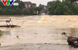 Lũ trên sông Kôn và lũ trên các sông từ Quảng Ngãi đến Phú Yên và Gia Lai