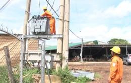 Lâm Đồng cấp điện cho 7 thôn chưa có điện trước Tết Nguyên đán 2018