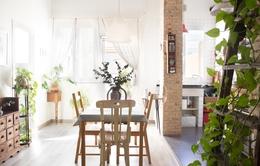 Không gian sống của cặp đôi trong căn hộ ngập tràn ánh sáng