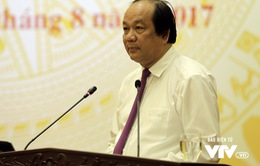 Chính phủ trả lời về đơn xin nghỉ việc của Thứ trưởng Hồ Thị Kim Thoa