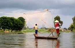 Nghề chài cá gắn bó với vùng sông nước miền Tây