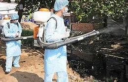 Đà Nẵng triển khai các biện pháp phòng chống sốt xuất huyết
