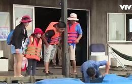 Độc đáo mô hình nuôi cá bè làm du lịch ở Cần Thơ