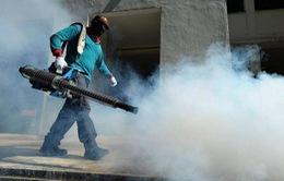 Singapore phát hiện ổ virus Zika mới gần khu vực Tây - Bắc