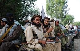 Afghanistan: Phiến quân Taliban bắt đầu cuộc tấn công mùa Xuân