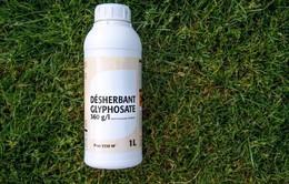 EU gia hạn sử dụng chất Glyphosate cho 5 năm tới