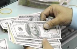 Hậu Giang: Tiến hành trao trả số ngoại tệ hơn 9 tỷ đồng cho chủ nhân