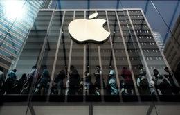 """Mua công ty sạc không dây: Đến thời Apple """"làm tất ăn cả""""?"""