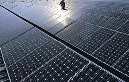 Vượt Mỹ, Ấn Độ trở thành thị trường năng lượng tái tạo hấp dẫn thứ 2 thế giới