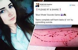 Cảnh báo trò chơi tự sát Thử thách cá voi xanh ở Chile