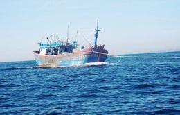 Tàu cá Khánh Hòa gặp nạn, 3 ngư dân được cứu sống