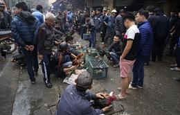 TP.HCM: Tràn lan mua bán gia cầm sống ở chợ