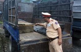 Cảnh sát giao thông Quảng Nam liên tiếp bắt xe vận chuyển gỗ lậu