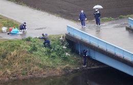 Sự kiện nổi bật tuần: Bé gái người Việt bị sát hại tại Nhật Bản