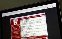 Hơn 240 đơn vị tại Việt Nam bị nhiễm mã độc WannaCry