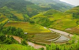 Việt Nam duy trì trong top 20 quốc gia đẹp nhất thế giới