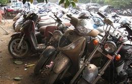Bán đấu giá lô xe máy vi phạm giao thông tại TP.HCM