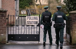 Bắc Ireland chờ đợi kết quả bầu cử trước thời hạn