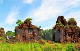 Phát hiện một đường cổ trong lòng đất ở Thánh địa Mỹ Sơn