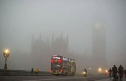 100 chuyến bay bị hủy do sương mù ở Anh