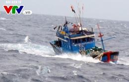 Thanh Hóa tiếp tục tìm kiếm 10 thuyền viên mất tích