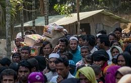 Myanmar: Hàng nghìn người sơ tán khỏi bang Rakhine do bạo lực leo thang